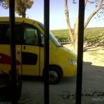 Jerez de la Frontera-20130423-00943