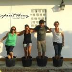 vendimia con nosotros, experiencias enoturismo Jerez, turismo para todos Spirit Sherry (5)