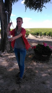 Fiestas de la vendimia Jerez 2014 visita a la viña spirit sherry enoturismo turismo andalucia algo diferente cadiz (2)