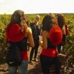 enoturismo rural planes de boda, sorprender a una novia o un novio amante del vino