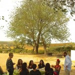 Sherry experience, despedida de soltera originales,  amantes del vino, ideas wedding stag party