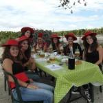 vineyard prebodas, fiestas despedidas de soltera original, cata de vinos provincia de cadiz entre viñedos  wine tours