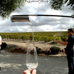 Enoturismo Jerez Experiencia sherry vino de jerez algo diferente que hacer aprender a vneenciar