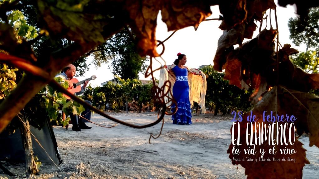 Festival de Jerez, Flamenco,What to do in Jerez