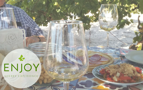 enjoy Live Sherry Experience. Wine Tour Sherry Wine, Tasting Special Private tour. Vine, Jerez de la Frontera harvest, Sevilla travel