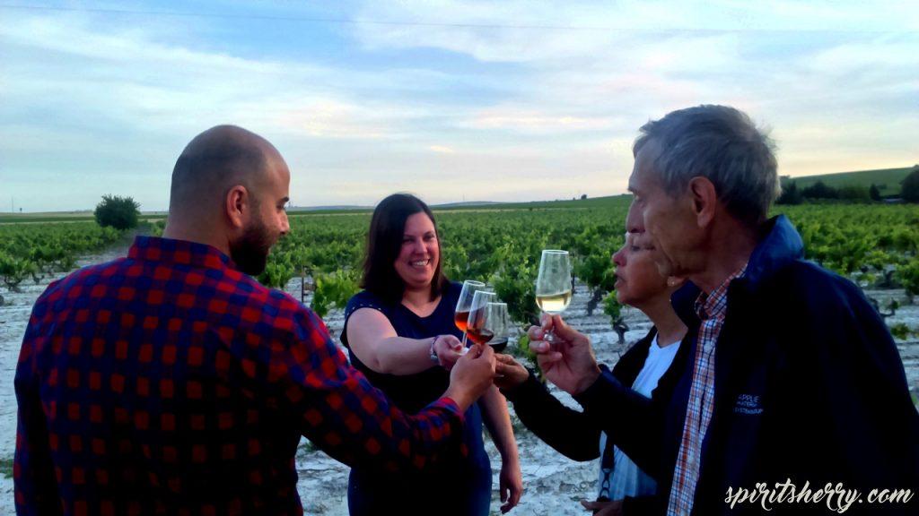 atardeceres en el marco de jerez, visit vineyard winery jerez sherry tour