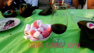 Fiesta del Sherry, cata low cost, planes diferentes cadiz, despedidas de soltero, visita viñedos bodegas