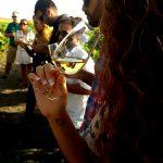 Fiestas del sherry, enoturismo planes molones como disfrutar de la provincia de cadiz, visita viñedos atardeceres en cadiz increibles