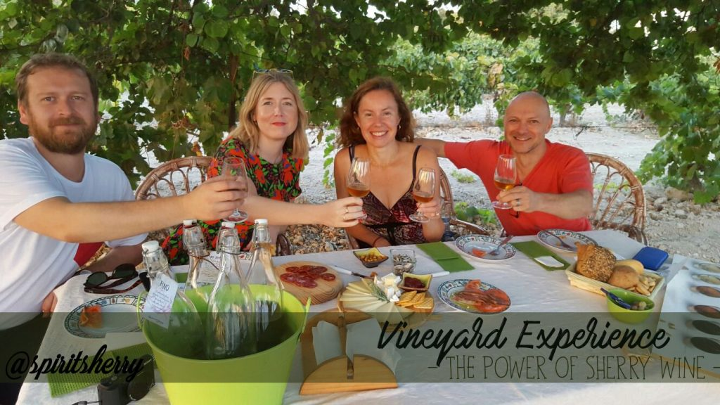 vieyard-experience-sherry-triangle-jerez-de-la-frontera-visit-to-the-vineyard-life-stule-experience-winetour-tourism