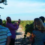 Jerez wineries vineyard visits, CADIZ PLANS