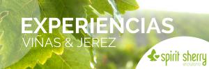 Sherry Experience, Visita a viñas Bodegas Jerez