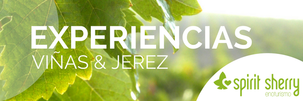 Sherry Experience, Visit vineyards Bodegas Jerez