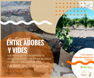 7 DE mayo Experiencias unicas en cádiz, Viñedos y arqueologia, Planes familiares verano 2017, Turismo provinci ade cadiz, planes molones