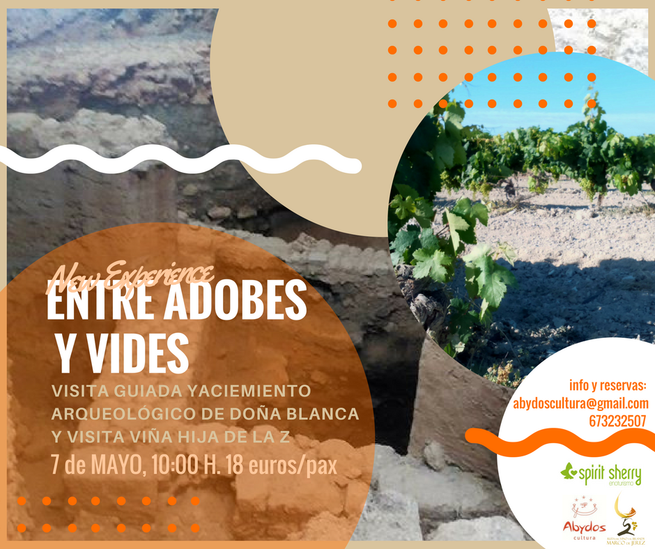 7 LIFETIME mayo in Cadiz, Vineyards and archeology, Summer family plans 2017, Tourism in Cadiz province ade, planes molones