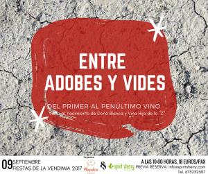 ENTRE ADOBES Y VIDES (4)