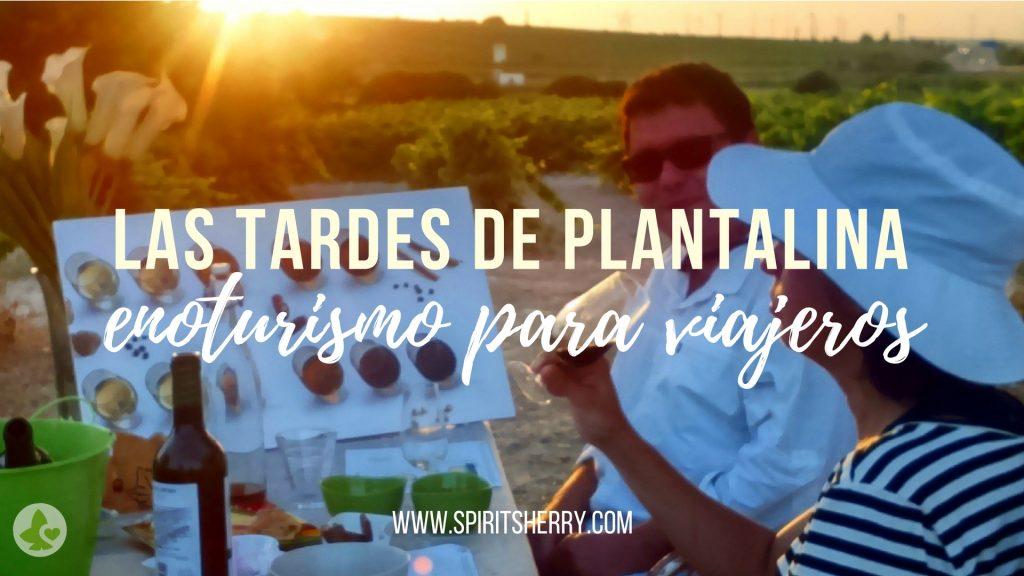 Las Tardes de Plantalina