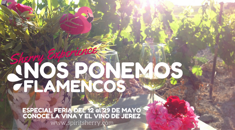 WE PUT FLAMENCOS. JEREZ FAIR SPECIAL, VISIT WINERY